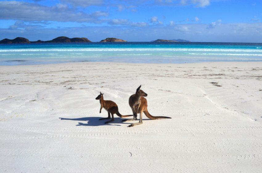 Путешествие в Австралию: как, сколько, где